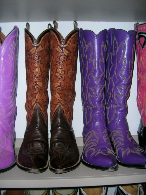 06e104240d4 Texas boots « Why Evolution Is True