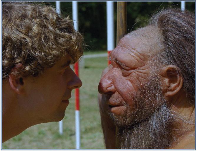 Human Neandertal