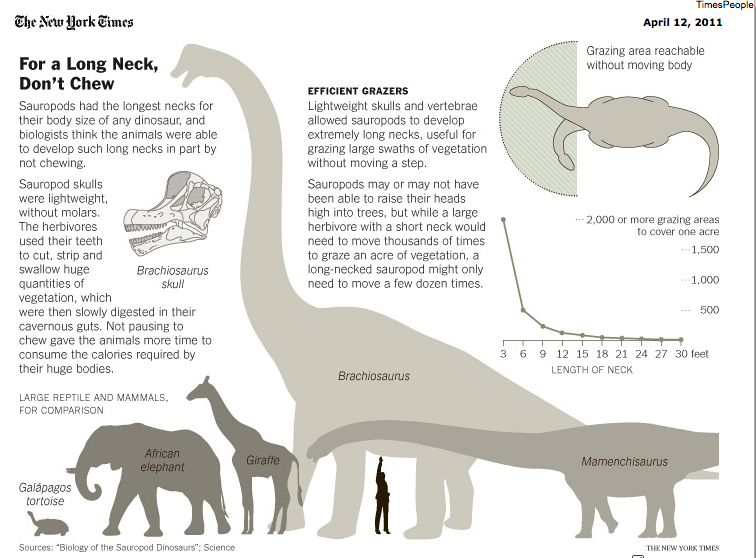 Sauropods « Why Evolution Is True