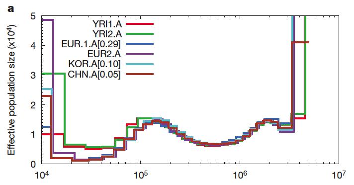 Picture 1 autosomal data