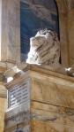 BPL lion