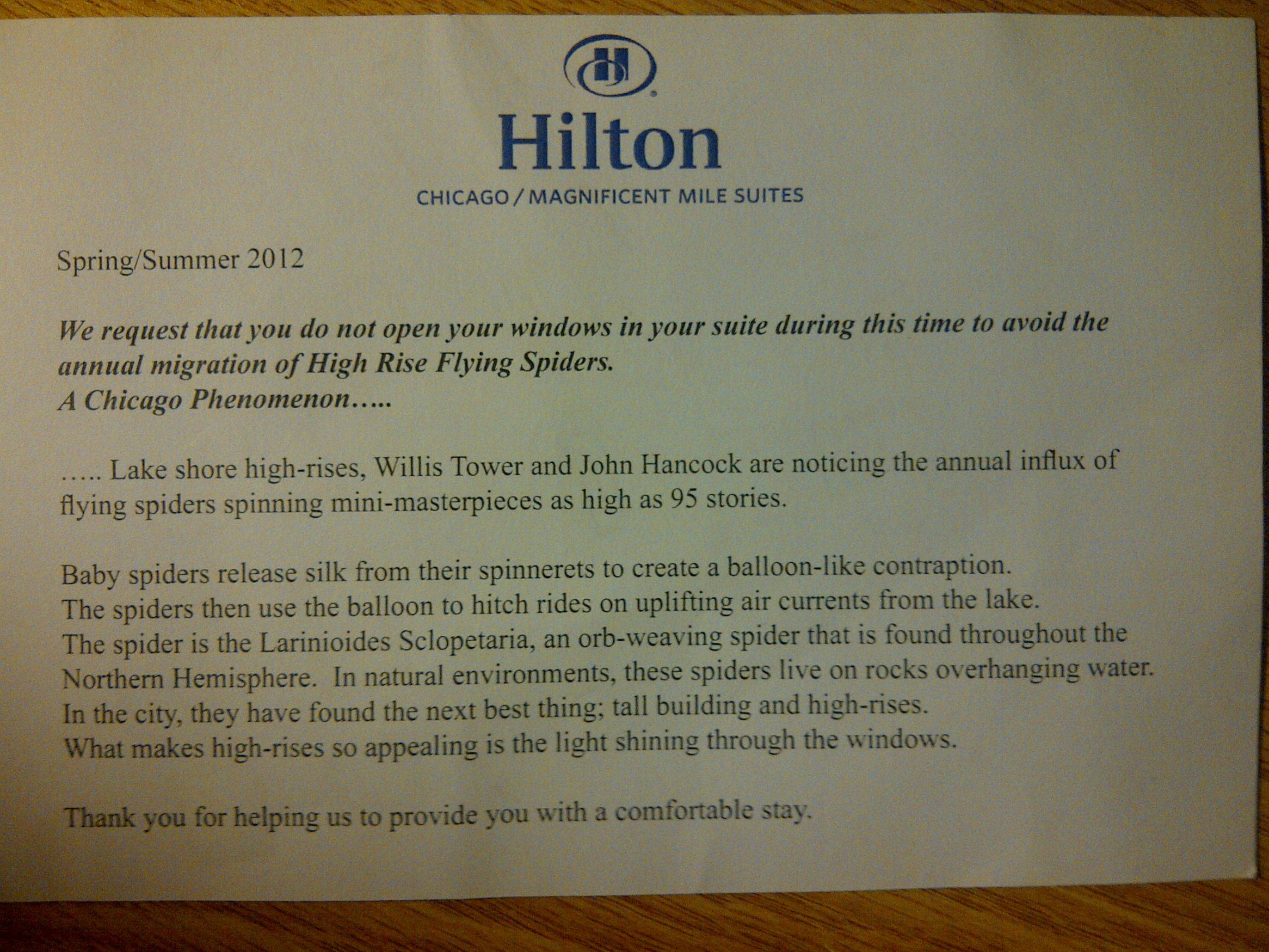 Ballooning Spiders At The Chicago Hilton Why Evolution