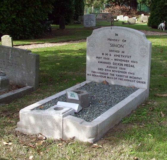 Simon's resting place at the PDSA Animal Cemetery in Ilford.