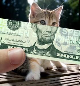 catnote