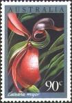Caleana-Orchid-04-210x300