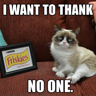 Tard the Grumpy Cat sells out to Friskies - I want to thank no one