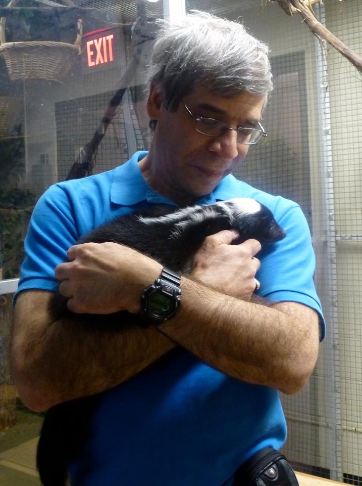 Holding skunk