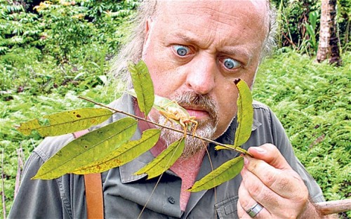 Bill Bailey admires an arthropod.