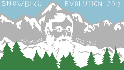 The Evolution 2013 Logo.