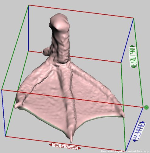 3d-printed-duck-foot-03.jpg.492x0_q85_crop-smart