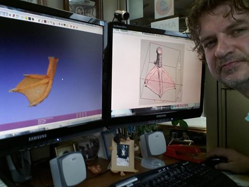 3d-printed-duck-foot-05.jpg.492x0_q85_crop-smart
