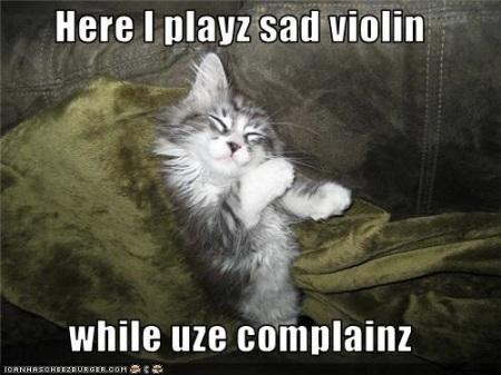 Violin complaining cat copy