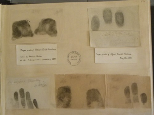 Gladstone's (left) and Wallace's fingerprints. Photo by Dom.