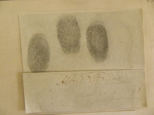 Wallace's fingerprints, taken May 28, 1891. Photo by Dom.