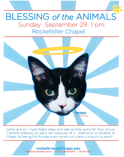 Blessing of the animals at the University of Chicago « Why