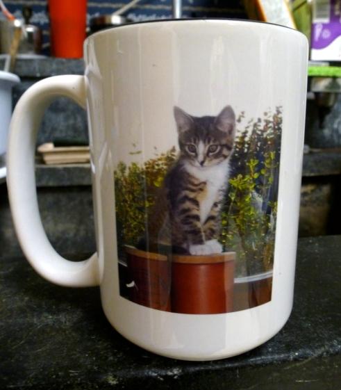 Hili mug