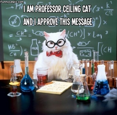 Professor Ceiling Cat text