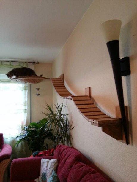 ceiling-furniture-for-cats-by-goldatze-gold-paw-7