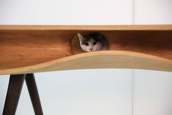 catable-cat-table-2