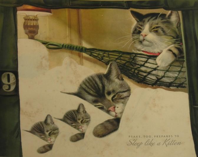 1359693073_45_FT71566_peake_sleeps_like_a_kitten