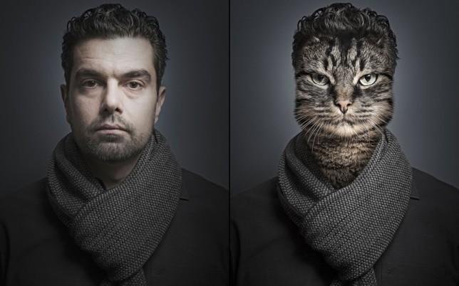 cat-antonio_2961537k
