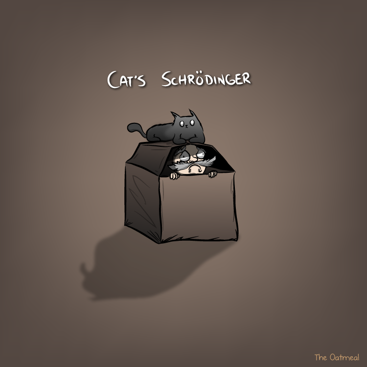 cats_schrodinger « Why Evolution Is True