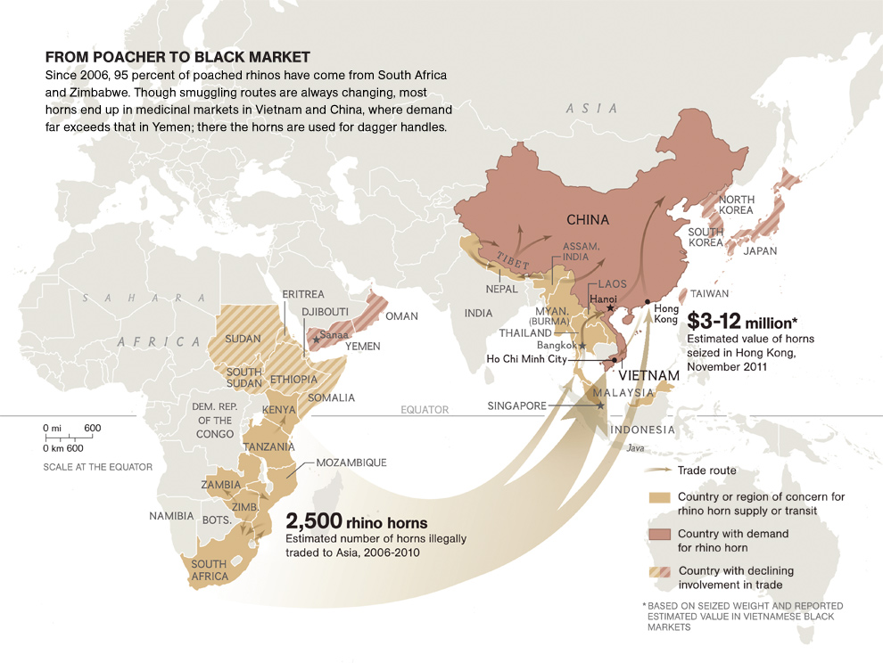 The trade in rhino horns, from National Geographic.