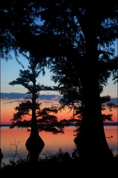 reelfoot_lake_dawn