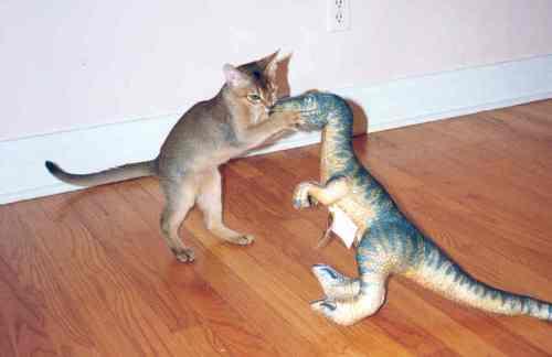 Leo battles velociraptor.