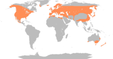 220px-Anas_platyrhynchos_distribution_map
