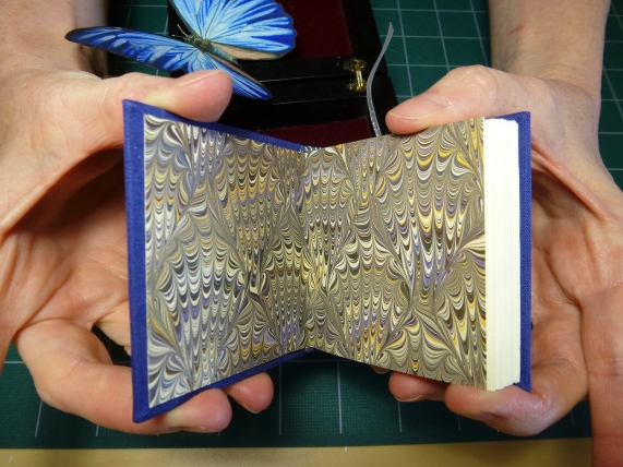 Morpho book end papers
