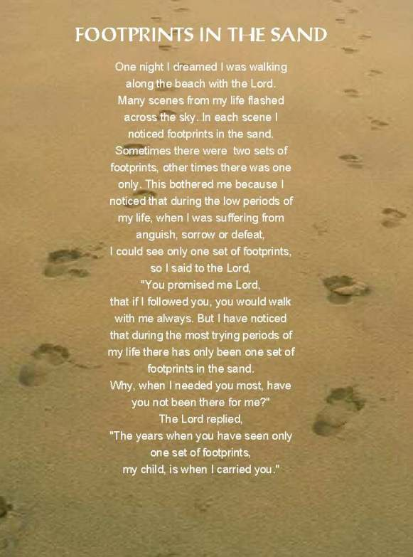 footprints in the sand why evolution is true