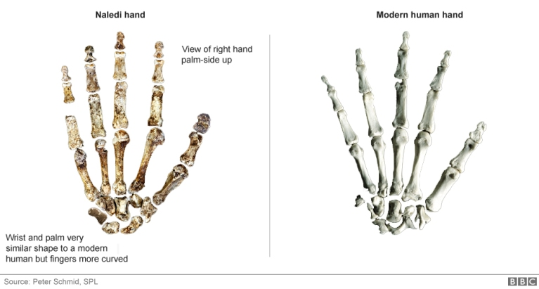 hands_976