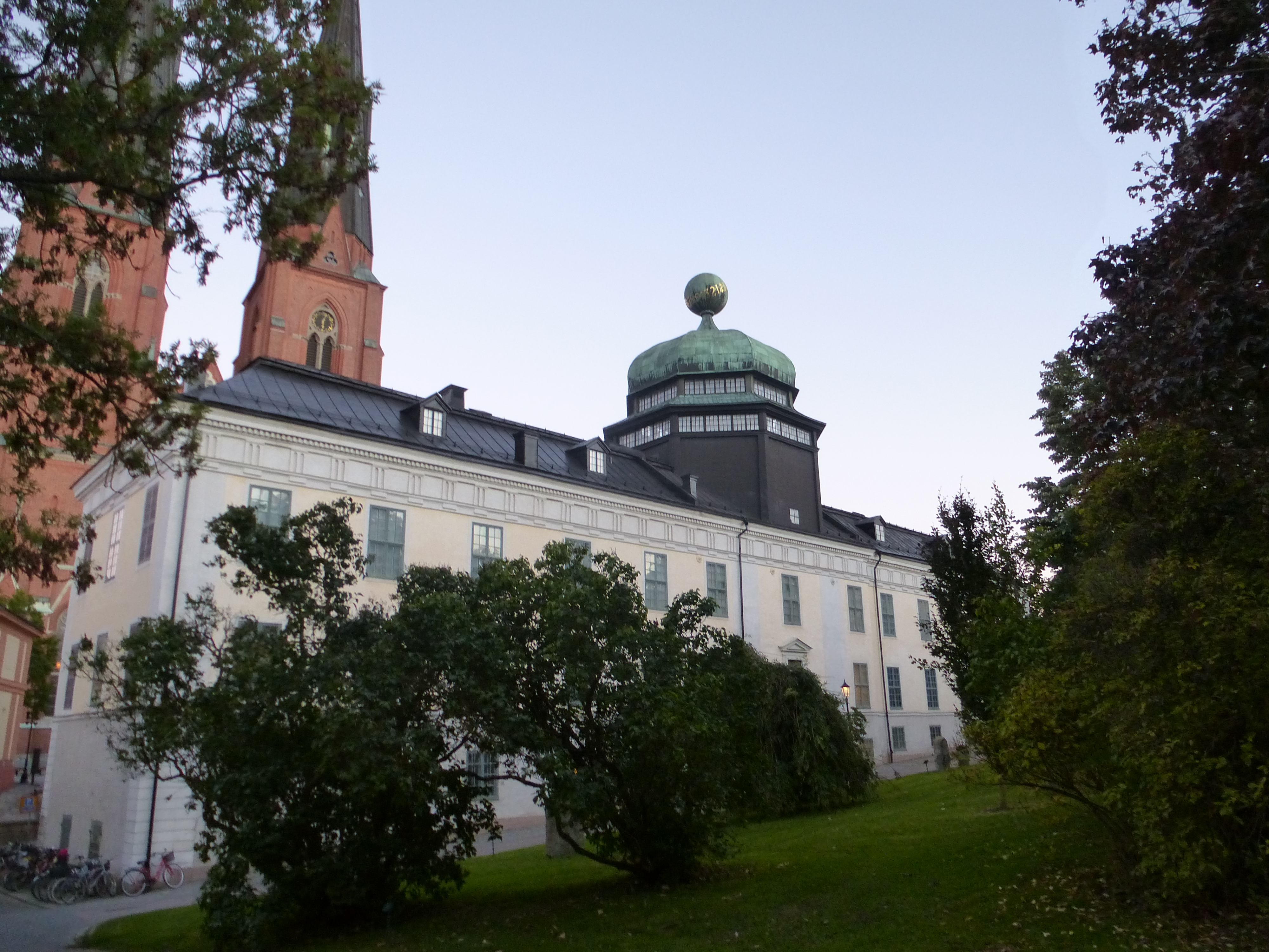 realistic dildo eskorter i stockholm