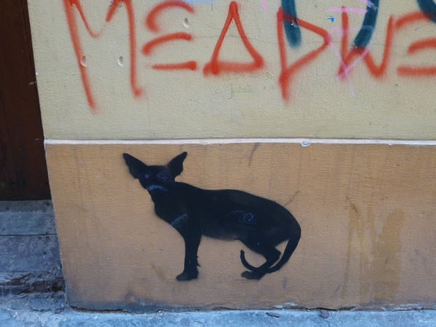 Graffiti cat torun 2
