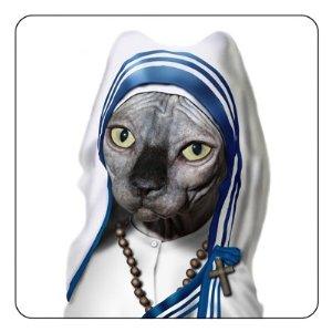 mother-teresa-cat