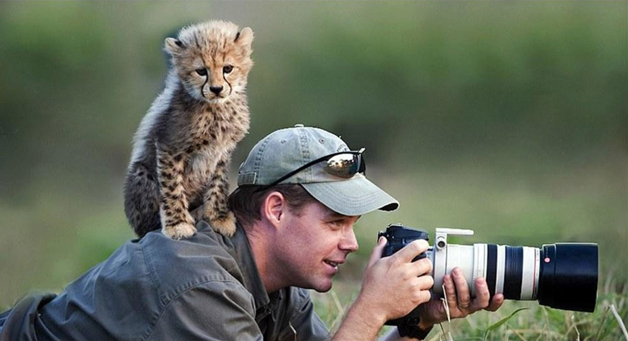 Nature Picture With Animals