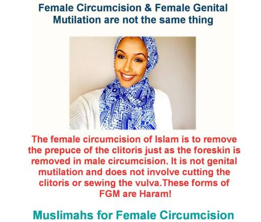 female mutilation essay