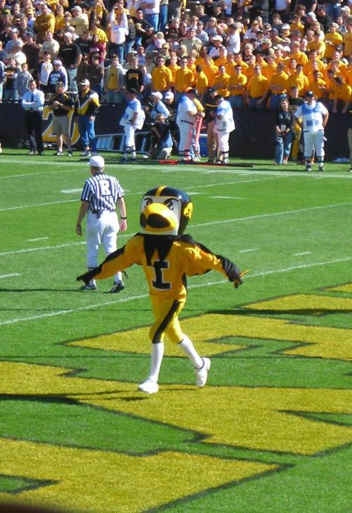 Herky_the_Hawk