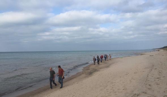 coynefest-dunes