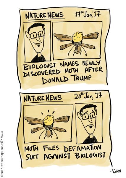 donald-trump-moth-copy-copy