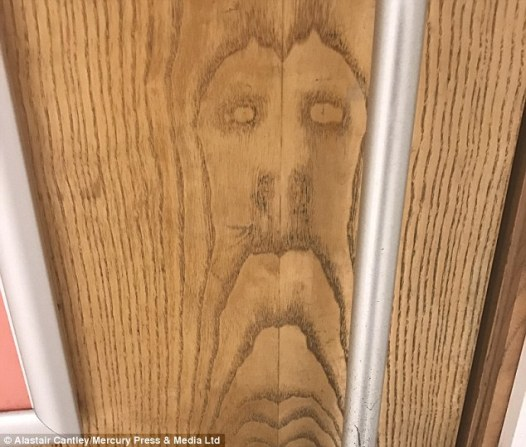 3c17ec8800000578-0-alastair_cantley_23_spotted_the_face_of_jesus_on_a_toilet_door_a-m-46_1484301969210