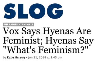 Do hyenas smash the patriarchy? « Why Evolution Is True